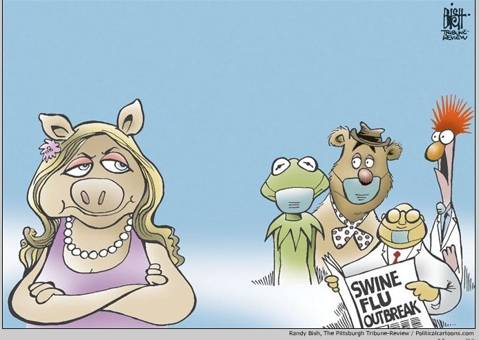 Swine-flu-cartoons