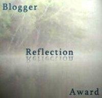 Bloggeraward252breflections
